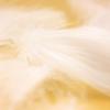 羽毛布団の産地偽装について