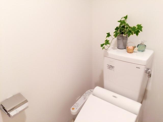 トイレに観葉植物を置いておしゃれにする