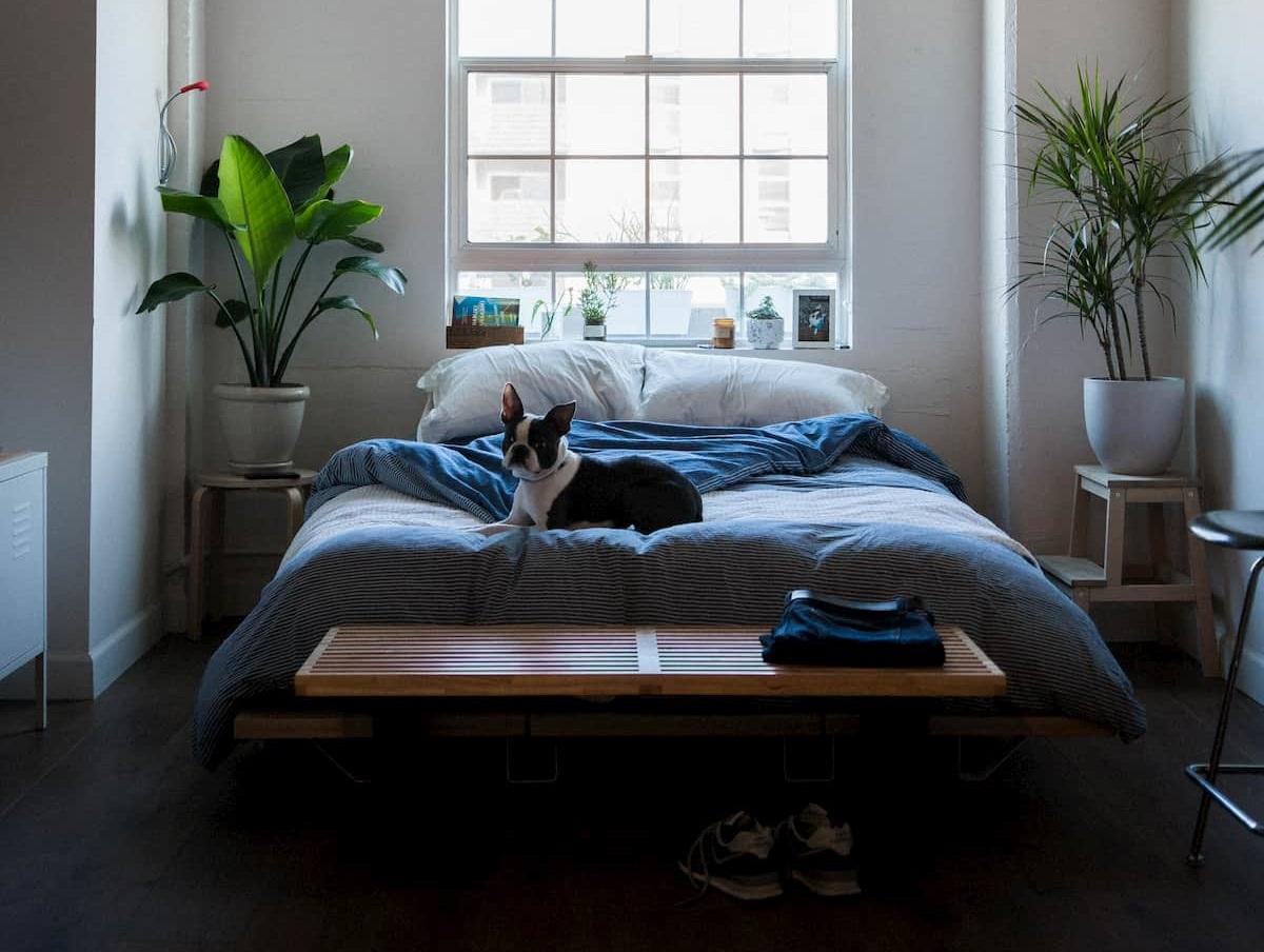 寝室のベッド配置のポイント